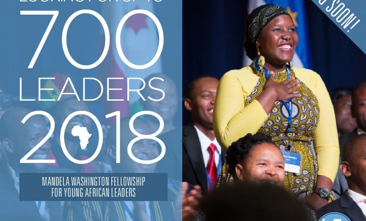 Mandela Washington Fellowship Application Information
